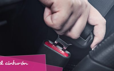 ¿Sabías que utilizar el cinturón de seguridad reduce un 77% el riesgo de muerte?
